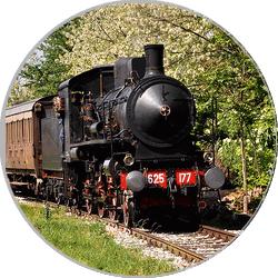 Mezzi di Trasporto Treno